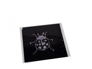 Lady Bug Greeting Card Handmade Ballarat